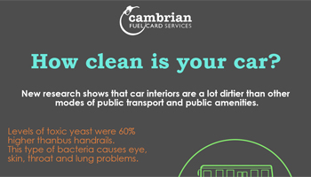 clean car infog preview