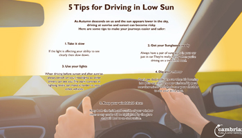 low sun tips infog preview