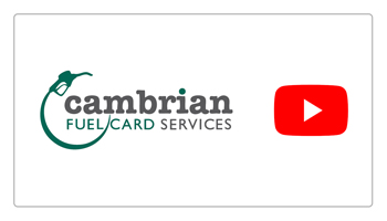 cambrian youtube preview