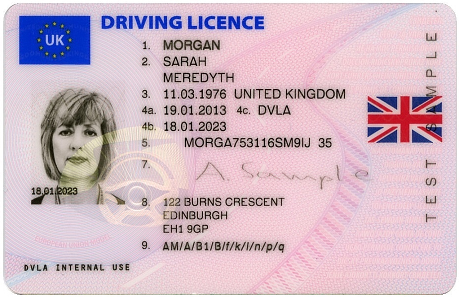 driving licence photocard pic